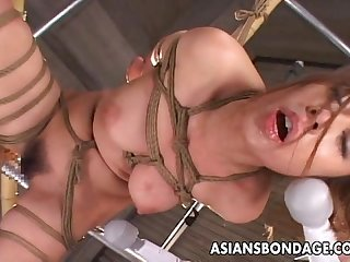 Asian honey roped up getting toy fucked marvelously